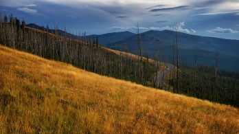 way from Yellowstone