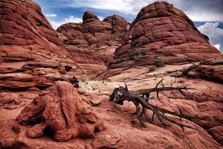Arizona/Utah red waves landscape