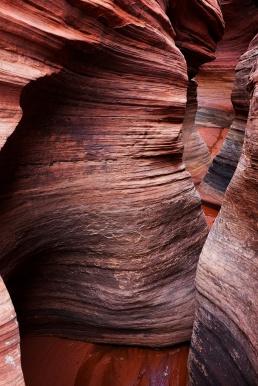 dangerous canyon .
